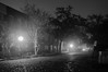 A Foggy Night in Charleston 2017-12 (King_of_Games) Tags: charleston chs southcarolina sc longexposure fog foggy night cobblestone