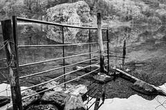 Gate on Gwynant (AJP1965) Tags: lake still calm refelction bw snowdonia gwynant
