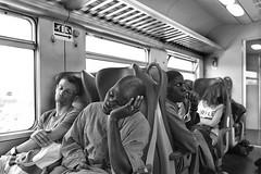 Non tutti dormono.... (carlo tardani) Tags: viaggiointreno scompartimento passeggeri viaggiatori treno bw bianconero blackandwhitephotos nikond750