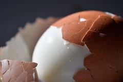 Egg A-peeling (camsdl) Tags: egg peel food macromondays itsapeeling