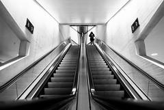 (Magdalena Roeseler) Tags: street strassenfotografie streetphotography candid stairs travel trainstation fineart bw monochrome sbb zurich switzerland geometry lines symmetry olympus zuiko12mm