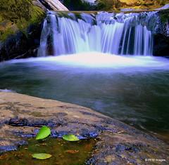 Sweet Creek Falls (pandt) Tags: sweet creek falls water waterfall outdoor landscape stream leaves longexposure canon eos 7d