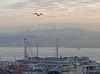 Morning in Istanbul (baltoji) Tags: istanbul turkey bosphorus harbor
