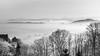 fog (schneider-lein) Tags: white blackwhite weiss schwarz landschaft landscape mono monotone monochrome nebel fog earlymorning frost frosty hazy smokey berge mountains silhouette baum trees tree natur nautre minoltamd2004 mf manual manualfocus manuell manuellerfokus sonyilce7rm2 alpha7rm2 a7rii sitzberg schweiz switzerland swiss suisse svizzera