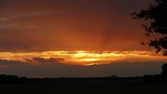 Coucher du soleil - 9 octobre 2016 - Rambouillet - Yvelines - Ile-de-France - France (vanaspati1) Tags: coucher du soleil sun ciel sky couleurs colores orange jaune lumière light vanaspati1 nuages clouds sunset paysage 9 octobre 2016 rambouillet yvelines iledefrance france