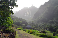 Limahuli Garden & Preserve (Montipython) Tags: national tropical botanical garden kauai haena halelea limahuli preserve