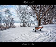 It felt so cold... (Nikos O'Nick) Tags: nikos onick kotanidis nicholas nikon d810 nikkor 1424mm hellas greece kastoria western macedonia lake snow ice white trees it felt cold bench empty manfrotto tripod xprob ballhead 498rc2 νίκοσ κοτανίδησ καστοριά ελλάδα μακεδονία δυτική δέντρα λίμνη πάγοσ χιόνι παγκάκι κρύο λευκό ουρανόσ σύννεφα sky clouds frame landscape nikond810 νίκοσκοτανίδησ manfrotto055xrpob