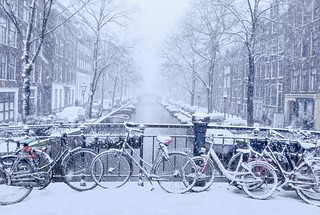 It's magical as snow flurries began to fall in Amsterdam