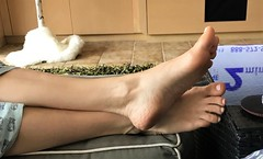 Foot Action (Ped-antics) Tags: sexy feet female foot footfetish femalefeet fetish toes heels ankles arches amateur