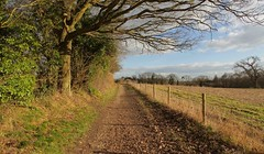 Ightham Mote Walks (Adam Swaine) Tags: ighthammote naturelovers nationaltrust nature kentishlandscapes kentweald kent rural ruralkent sunlight paths footpath walks countryside counties countrylanes ukcounties trees hedges hedgerows england english englishlandscapes britain british fields