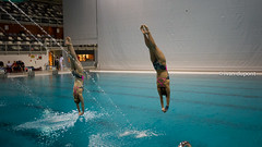 PSV Master Diving Cup 2017, Eindhoven, The Netherlands (monsieur I) Tags: eu psvmasterdivingcup2017 acrobaticdiving competition competitor discover dive dives diving eindhoven europa europe intheair masters monsieuri netherlands photography sport sports water world yourlimits
