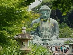 鎌倉大仏 (ryosukenagaiwa) Tags: green face statue japan big buddha kamakura sit kanagawa