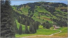 Der Weg ist das Ziel (Sonnenblume) Tags: schweiz berge rigi kraftort zentralschweiz wanderparadies