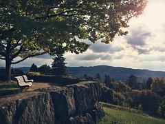 One Day in Fall (noelboss) Tags: fall switzerland zurich