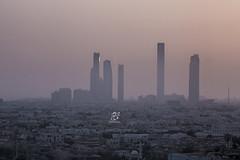 Abu Dhabi 2015 (Mohammed Alborum) Tags: camera macro water animal canon photography hotel timelapse dubai juice taxi uae ad mosque zayed abudhabi arab wtc alain    canon50mm18         etihad              yasisland  canon550d canon70d  dhabiya leptoceros mohammedalborum