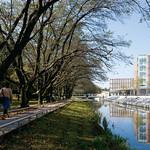 ランドスケープおよび施設整備によるキャンパス・リノベーションの写真