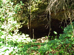 (Psinthos.Net) Tags: autumn light shadow sunlight leaves dark october day afternoon stones branches autumnleaves valley greenery cave lichens brambles sunnyday fallenleaves wildplants  sorrels   psinthos   wildivy              psinthosvalley