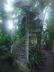 DSCF1462 (lecoeurenlair) Tags: green nature plante copenhagen denmark stair jardin botanicgarden escalier danemark copenhague