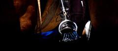 Estribo criollo (Eduardo Amorim) Tags: horse southamerica argentina caballo cheval pferde cavallo cavalo gauchos pferd ayacucho pampa loro hest hevonen apero gaucho staffa  amricadosul loros stirrup hst gacho estribo  amriquedusud provinciadebuenosaires  recado gachos  sudamrica suramrica amricadelsur  sdamerika  pilchas  buenosairesprovince pilchasgauchas steigbgel recao pampaargentina americadelsud  americameridionale eduardoamorim estribera estrivo trier pampaargentino