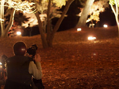 take a photo of taking a photo No.9 (matsugoro) Tags: autumn people night digital pen 50mm olympus autumnleaves shooting saitama zuiko nagatoro epl2