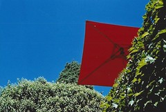 parachute (omnia_mutantur) Tags: ombrellone rosso rojo rouge vermelho red saintpauldevence francia france frança provenza provence sombrilla parasol guardasol umbrella green verde piante plants