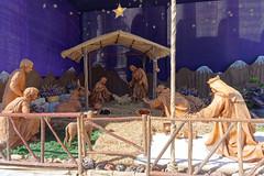 Szopka Bożonarodzeniowa przed Katedrą | Nativity scene