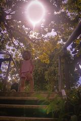 Hunting the sun (Josué Godoy) Tags: kid niña girl gamine arbre árboles trees sun soleil sol australia wildlife gens gente people jungle selva