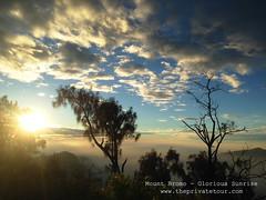 glorious sunrise (Alvin Gunawan) Tags: mountbromo mountain bromo bromomountain bromotour bromoprivatetour bromoview bromosunrise bromovolcano tourbromo tourtomountbromo