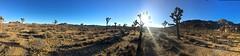 IMG_2554 (steph_abegg) Tags: 2016 california notmyphotos panorama
