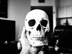 *** (Boris Rozenberg) Tags: skull blackwhite bw blackandwhite blackandwhitephotography grain monochrome monochramatic monument room home dead life olympus olympuspen 17mm primelens prime photography face person composition dof bokeh ep2 penep2 death cult