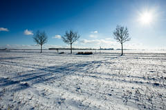 On a sunny winter afternoon (++sepp++) Tags: bayern deutschland januar landscape landschaft landschaftsfotografie lechfeld schnee wetter winter heiter sonnig sunny graben de bavaria germany snow sonne sun gegenlicht backlight backlit bäume trees