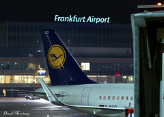 A German Tail! (birrlad) Tags: frankfurt fra international airport germany aircraft aviation airplane airplanes airline airliner airlines airways terminal ramp apron stand gate lufthansa airbus a320 a320200 a320214 daiuo night photography tail winglets sharklets