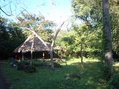 Parque La Llovizna (Wguayana) Tags: venezuela guayana puerto ordaz san félix macagua llovizna park parque nature tropical latin churuata choza hut