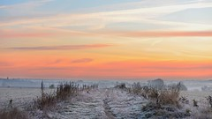 Winter (Marie.L.Manzor) Tags: snow winter landscaoe 2017 nikon d610 marielmanzor sky sunset countryside morning mood landscape light colors snowscape frost cold