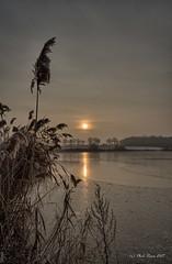 Petit matin sur la Dombes gelée ... (Prx.01) Tags: étang hiver froid gel roseaux leverdesoleil matin waterscape landscape paysage fuji xm1 1024mm
