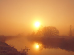 SUDDENLY COMES MIST DURING THE SUNRISE P2193566 (hans 1960) Tags: winter mist misty fog nebel sun sunrise sonne sol soleil himmel sky wasser river fluss trees bäume spiegelung mirrow golden licht light nature home heimat stille stillness hamony germany