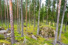 DSC_0742 (jvansen) Tags: finland fi somero southwestfinland
