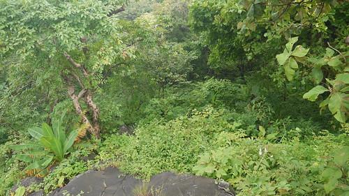 ... view from Mrudu Point