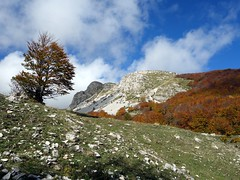 """Outlying peaks of Monti della Meta • <a style=""""font-size:0.8em;"""" href=""""http://www.flickr.com/photos/41849531@N04/21663619363/"""" target=""""_blank"""">View on Flickr</a>"""