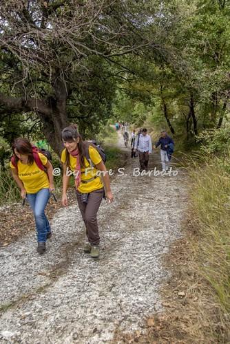 Sicignano degli Alburni (SA), 2015, Itinerari del buon vivere lungo la Via Popilia.