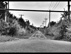 #blackandwhite #blackandwhitephotography #rurex #abandonedindiana #roadlesstraveled (trippy.beth) Tags: blackandwhite blackandwhitephotography roadlesstraveled rurex abandonedindiana