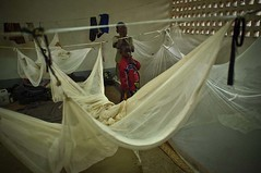 033001 (( Voice Nature. )) Tags: children roc congo congolese betou centralafricaandthegreatlakes congorepublicbrazzaville