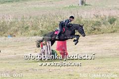 163L_0017 (Lukas Krajicek) Tags: military czechrepublic cz kon koně vysočina vysoina southbohemianregion blažejov dvoreček všestrannost dvoreek