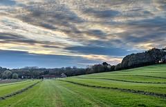 Maaigras - HDR - (Frank Berbers) Tags: autumn landscape herbst herfst landschaft hdr highdynamicrange herfstkleuren landschap zuidlimburg limburgslandschap herbstfarbe autumnleafcolor