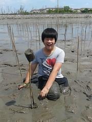 10.12.2015-AngloSingapore-BangPu-100 trees (23) (pattfoundation2014) Tags: thailand education mangrove treeplanting bangpu pattfoundation anglosingapore