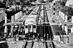 SunRail Orlando (2) (Chris Gent) Tags: railroad station train orlando florida orangecounty commuterrail commuterrailsystem sunrail sandlakestation