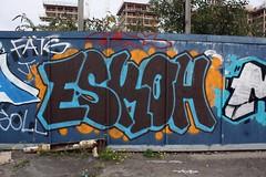 Eskoh - DLR Royal Victoria (Grafflix.co.uk) Tags: london graffiti illegal graff dlr esko srw dfn grafflix eskoh