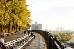 DSCF6425.jpg (unowhat) Tags: nyc autumn usa newyork west fall america perfect manhattan bigapple