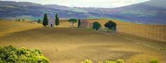 vita (olareynon) Tags: brown landscape san chapel val valley tuscany cypress dorcia orcia quirico vitaletta