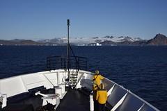 _DSC8819 (TC Yuen) Tags: glacier arctic greenland whales iceberg crusing floatingice polarregion greenlandeast